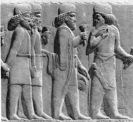 نیلوفر آبی (لوتوس) در نقش برجسته تخت جمشید۲